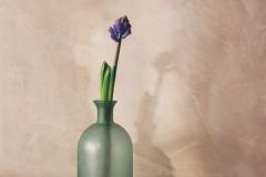 bottiglia con fiore